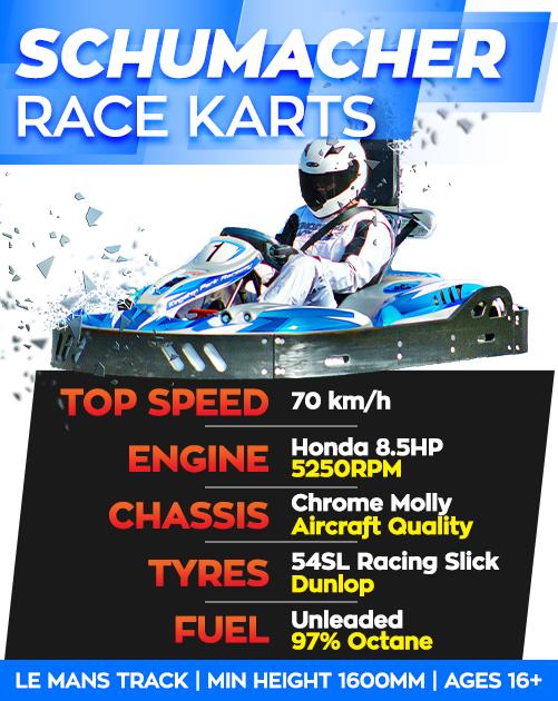 Adult-Party-Go-Karts-Specs